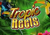 Тропические Барабаны